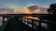 23rd Jul 2020 - Fishing dock at Paynes Prairie