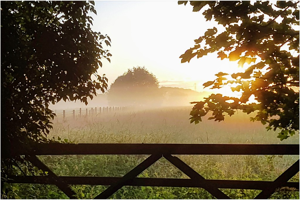 Misty sunrise by lyndamcg