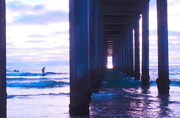 24th Jul 2020 - Surfin USA