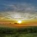 Sunrise by lynnz