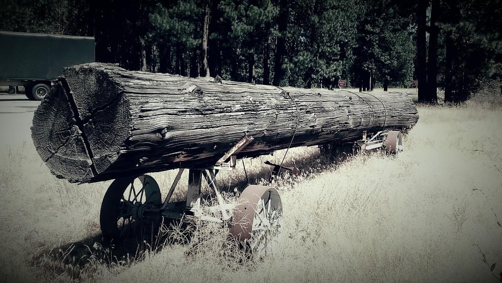 Old fashion tree hauling  by byrdlip