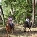 Horsebacking in the Bosque.