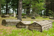25th Jul 2020 - Burial Ground