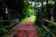 29th Jul 2020 - Footbridge 3