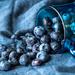 blues! by jernst1779