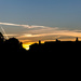 Sunset over Parker's Piece