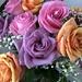 Birthday Roses by loweygrace