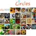 July's Circles