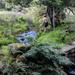 Upstream by overalvandaan