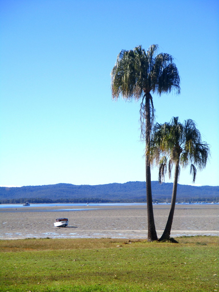 Tide  out at Tin Can Bay Queensland Australia by 777margo
