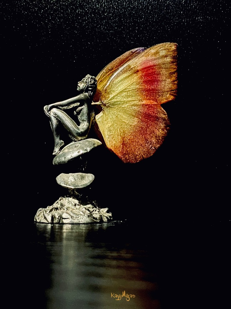 Curios Cabinet #1-The Butterfly Effect by mazoo