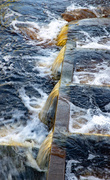1st Aug 2020 - Fast Flowing