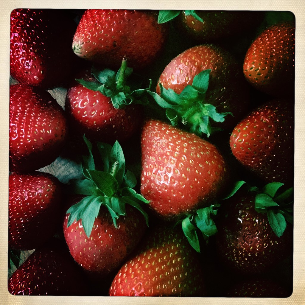 Strawberries  by andycoleborn