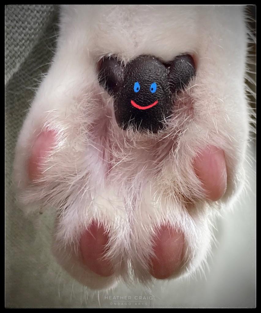 Unbearably Cute by pixelchix