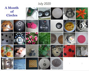 1st Aug 2020 - A Month of Circles