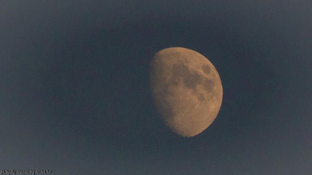 Moon by byrdlip
