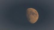 1st Aug 2020 - Moon