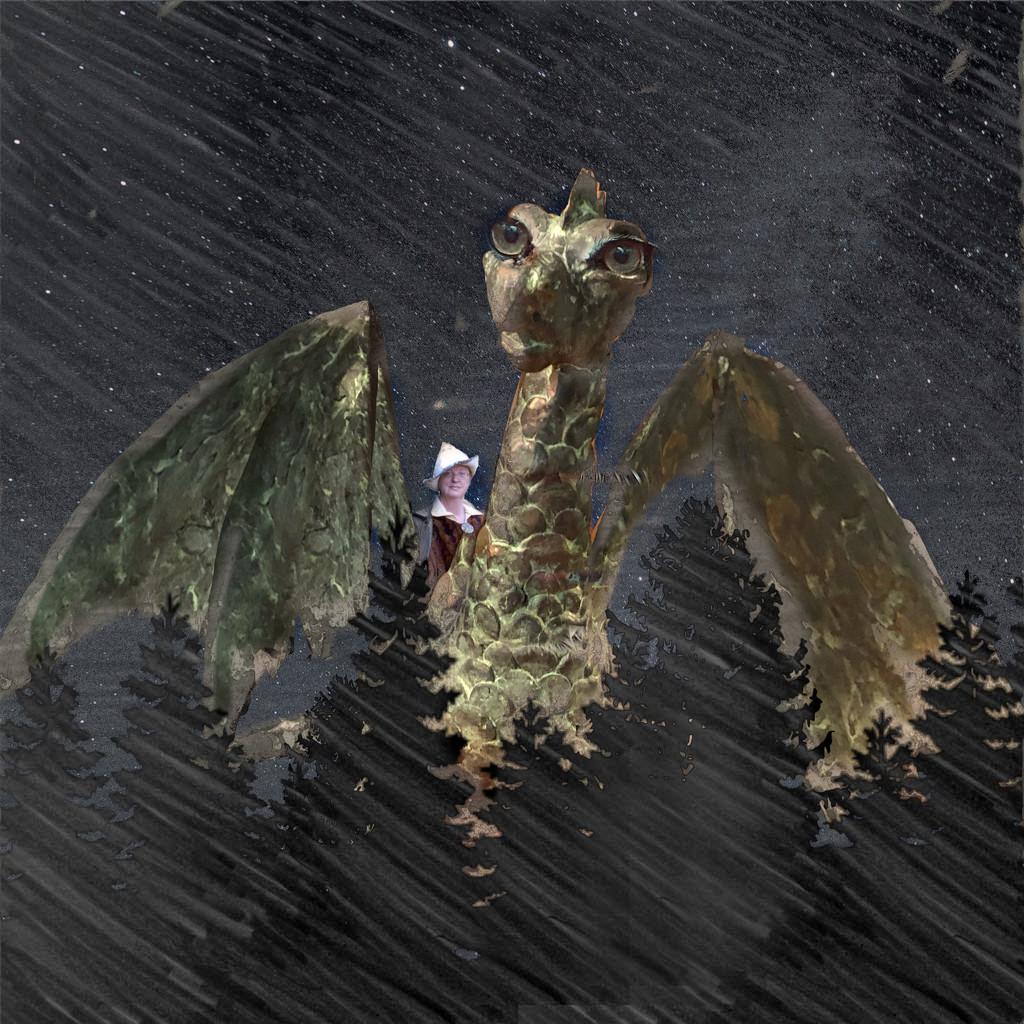 Dragonrider  by thedarkroom