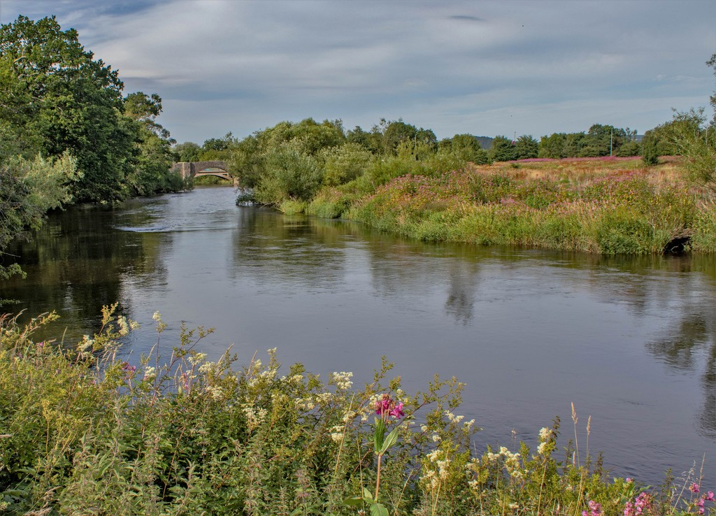 River Forth by sheilaw