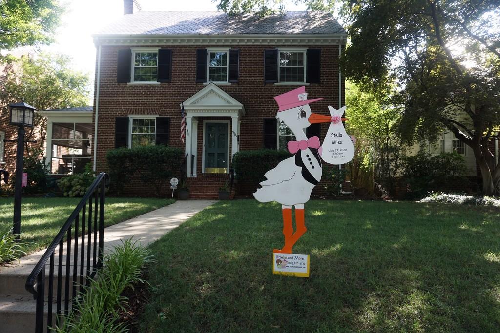 Good News in the Neighborhood by allie912