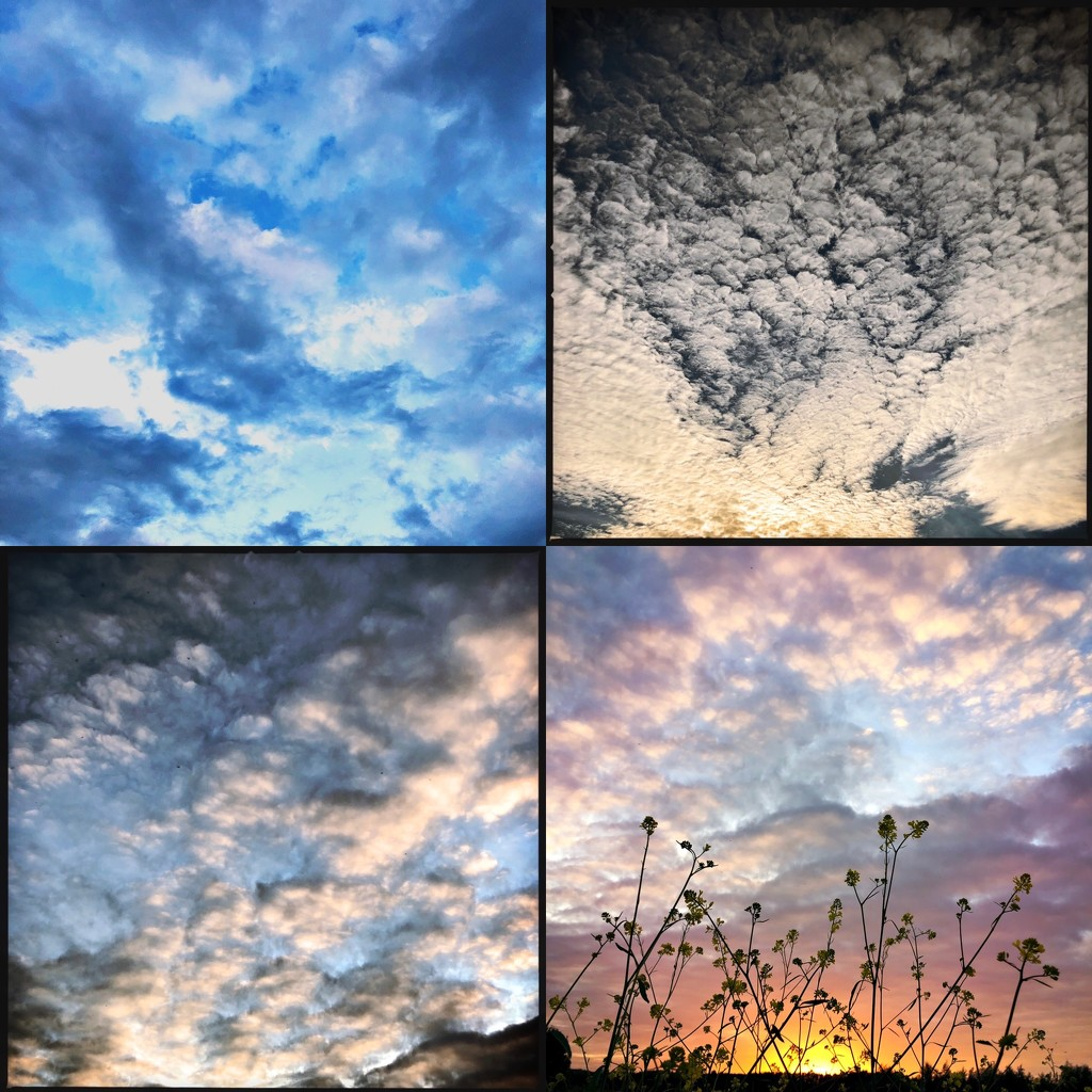 Different day, different sky by mastermek
