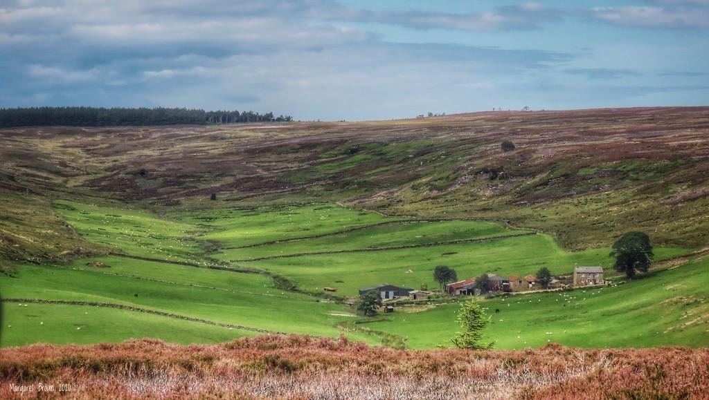 Sleddale Farm  by craftymeg