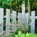 Gillie Grove
