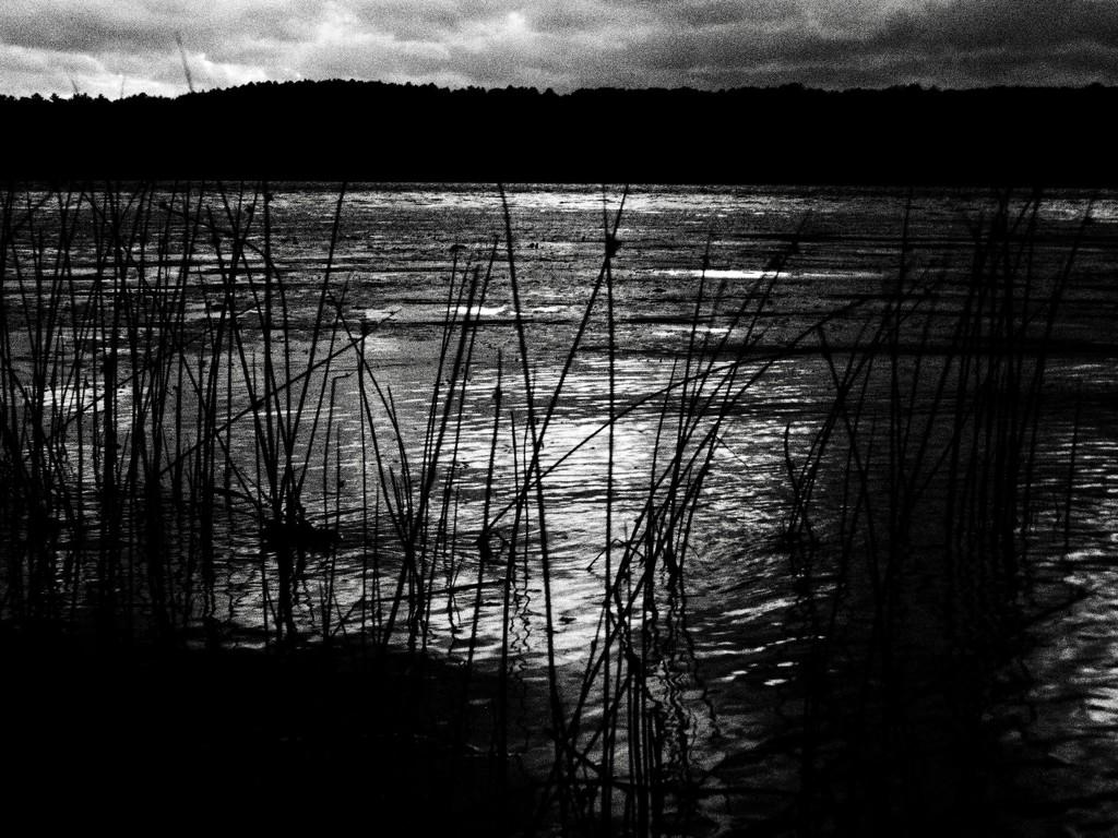 evening at the lake by transatlantic99