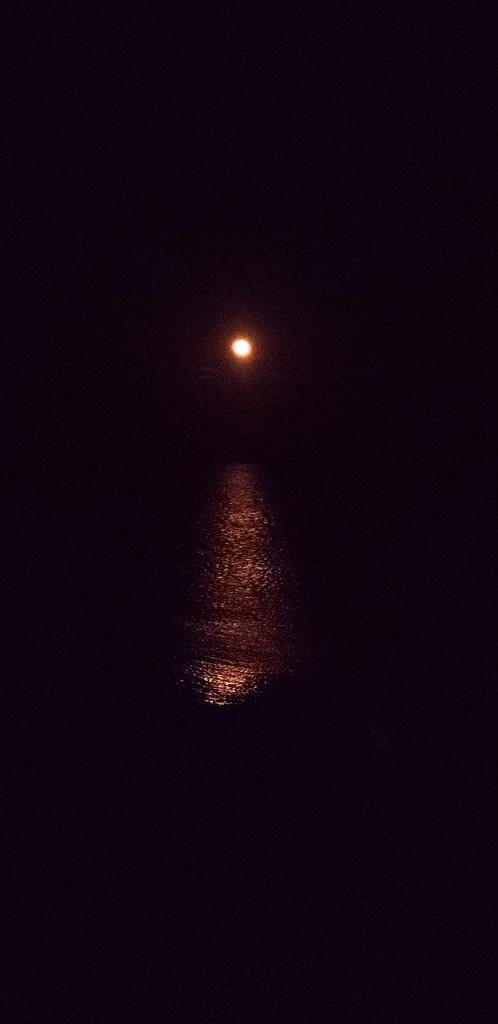 Golden moonrise by shine365