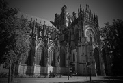 5th Aug 2020 - St. John's Cathedral ('s-Hertogenbosch)