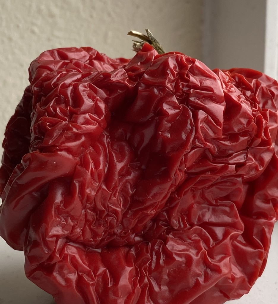 Red Pepper by clay88