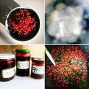 7th Aug 2020 - Garden jelly