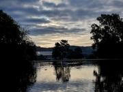 7th Aug 2020 - A calm morning park visit