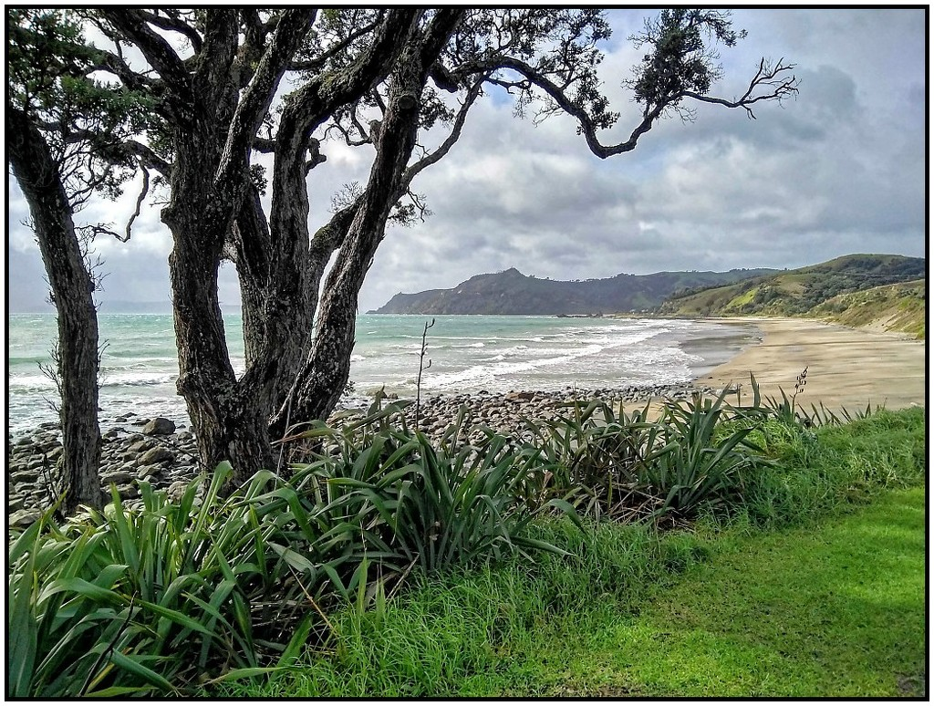 Nice NZ beach view by nzkites