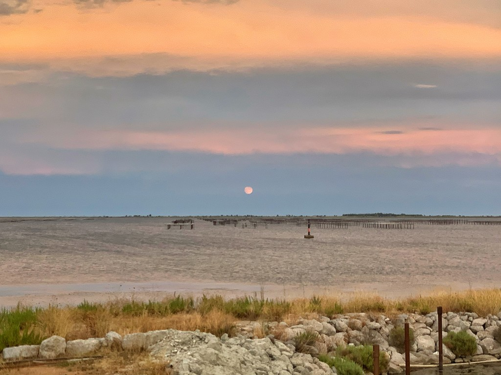 Pink sunset on étang de Thau.  by cocobella
