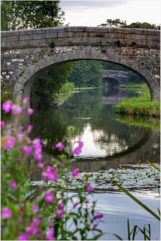Double bridge by lyndamcg