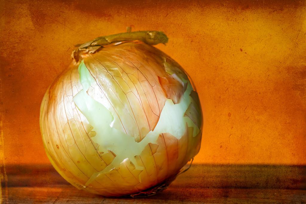 onion sunrise by jernst1779