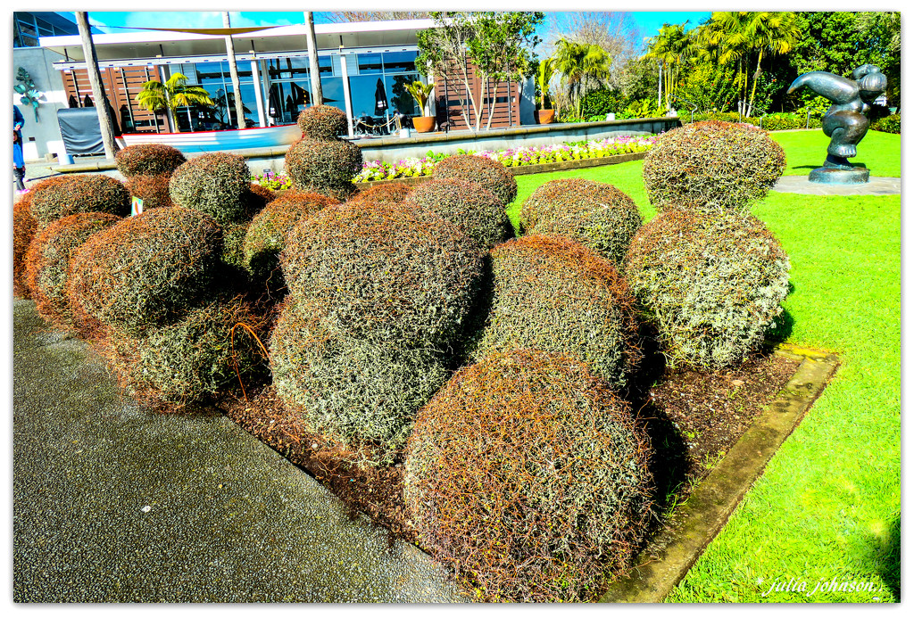 Wire bushes... by julzmaioro