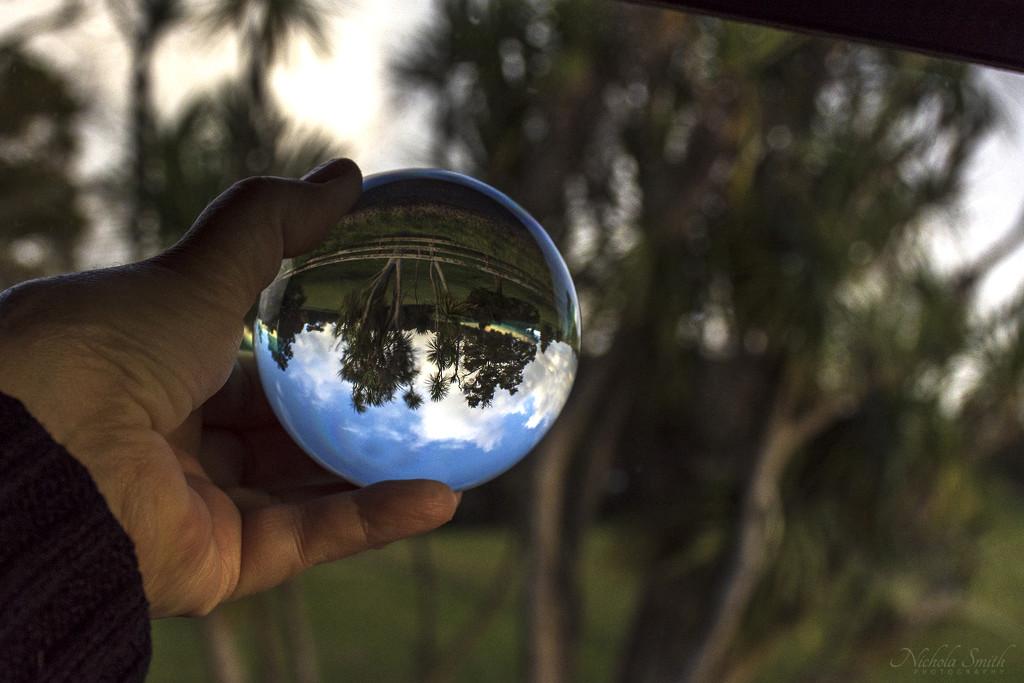 Through the Window by nickspicsnz