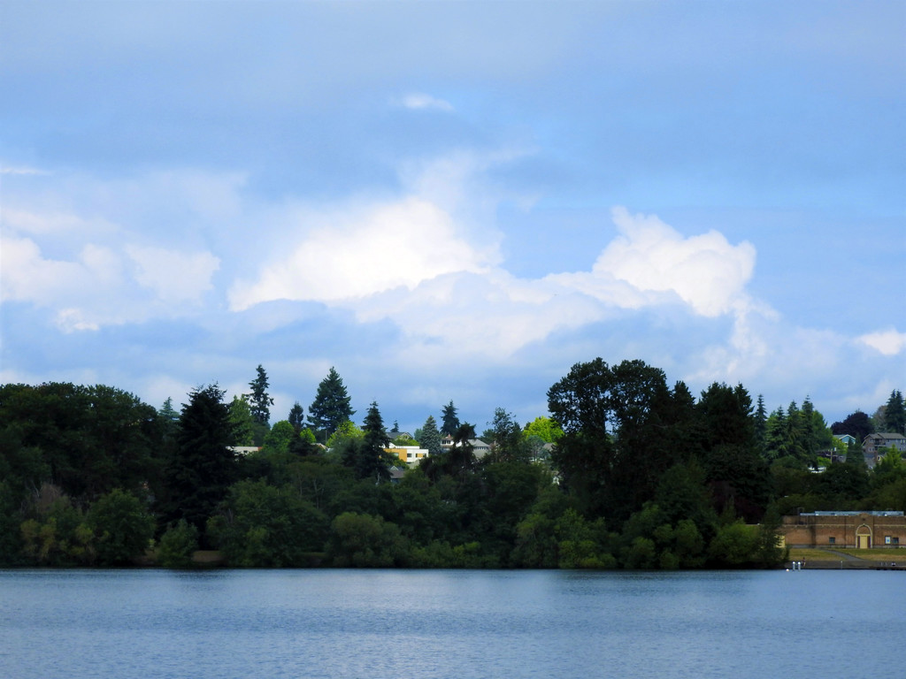 Green Lake by seattlite