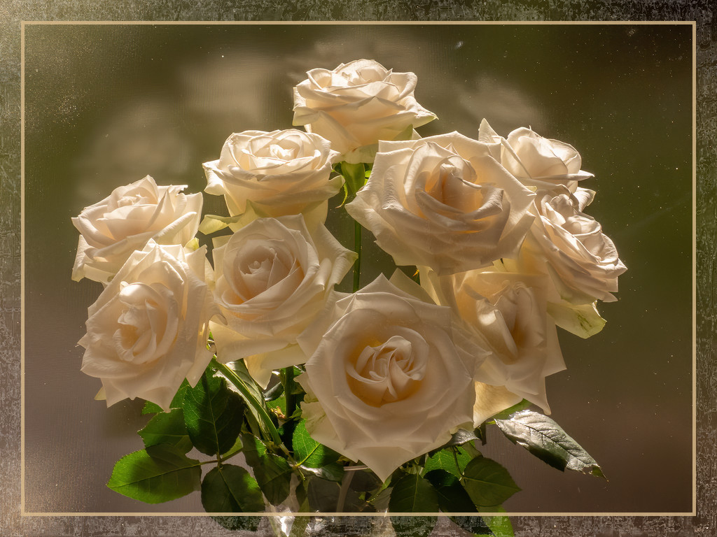 The roses from hubby by ludwigsdiana