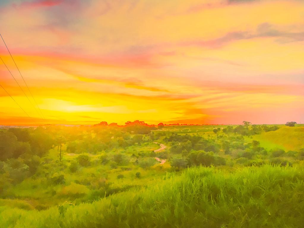 Dreaming of Green by zambianlass