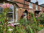 11th Aug 2020 - Cottage garden