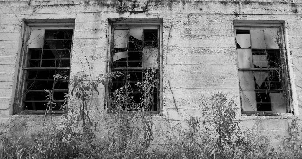 Broken windows by randystreat