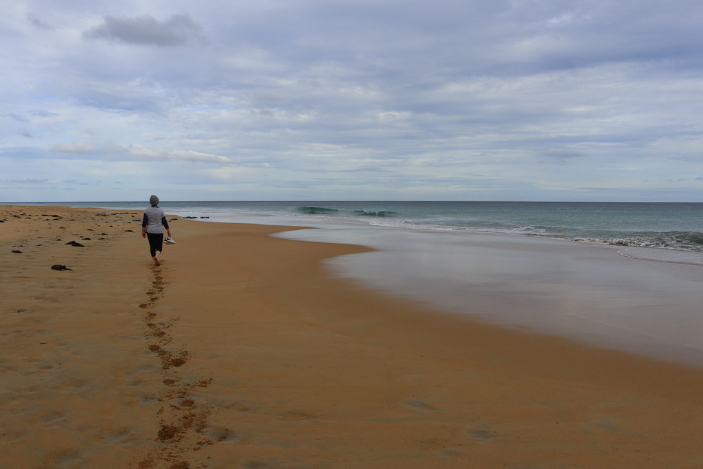 Isolation walk on an isolated beach by gilbertwood