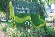 12th Aug 2020 -  Giant garden book
