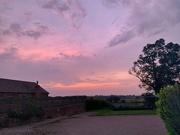12th Aug 2020 - Strange pink sky