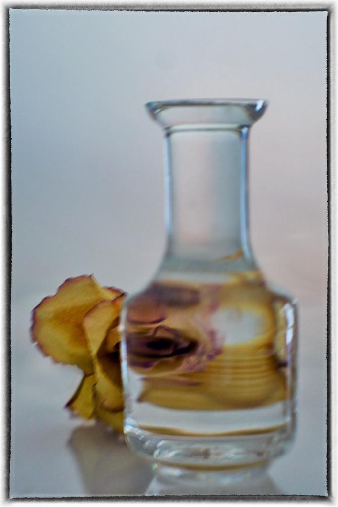 Water lens 8-12 by joysabin