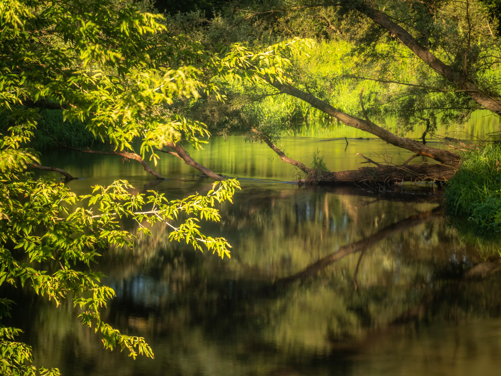 A wild river bend by haskar
