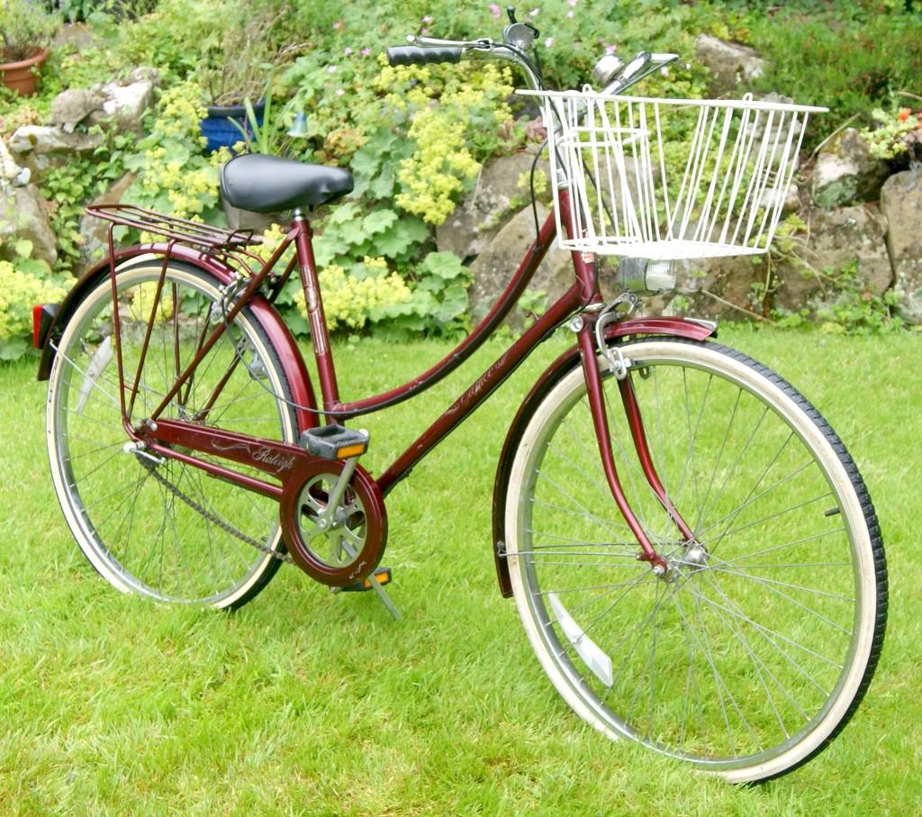My lovely old bike.... by filsie65